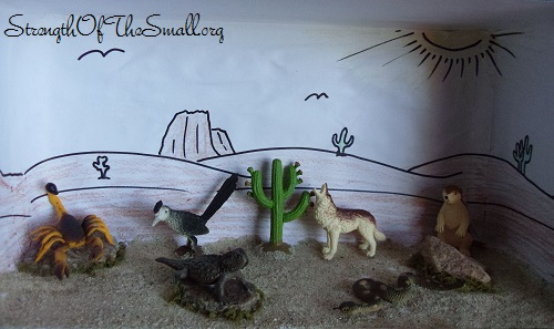 Desert Animal Diorama.
