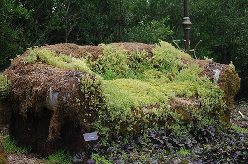 Moss Couch, Memphis Botanic Garden.