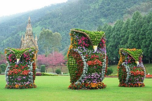 Owl Topiary.