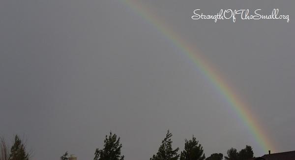 Rainbow during the Rainstorm.