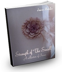 Strength Of The Small by Joan Ambu